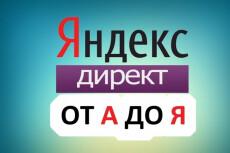 Видеокурс о настройке Яндекс.Директ 20 - kwork.ru