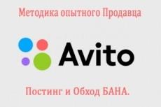 Увеличь в десятки раз поток клиентов с авито 12 - kwork.ru