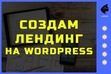 Создание одностраничника на Wordpress 78 - kwork.ru