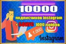 6000 подписчиков в инстаграм + бонусы всем 4 - kwork.ru