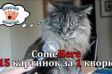 Добавлю текст на фотографию 6 - kwork.ru