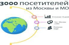 Качественный трафик. 5000 посетителей из Москвы и области 6 - kwork.ru