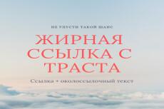 Вечная ссылка на трастовом новостном ресурсе с ИКС 1700 10 - kwork.ru