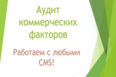 Полный анализ вашего сайта 23 - kwork.ru