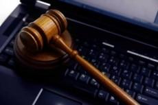 Первичная оценка документов по судебному делу, составление иска 4 - kwork.ru