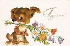 Напишу оригинальное поздравление на любой праздник 21 - kwork.ru