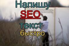 Напишу текст на любую тематику со вставкой ключей 23 - kwork.ru