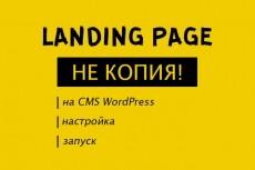 Создам лендинг на wordpress 11 - kwork.ru