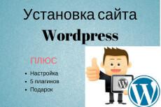 Создам сайт на wordpress с любой темой, установлю необходимые плагины 45 - kwork.ru