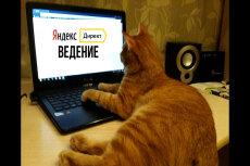 Ведение кампании в Яндекс. Директ 5 - kwork.ru