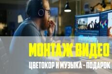 Видеомонтаж, Цветокоррекция 31 - kwork.ru