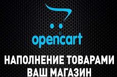 Наполню интернет-магазин товаром Opencart 4 - kwork.ru