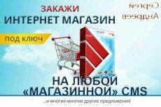 Выявлю и подскажу как устранить ошибки поисковой оптимизации сайта 24 - kwork.ru