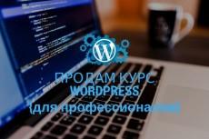 продам архив премиум тем  для вордпресс (16 шт) 11 - kwork.ru