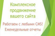 Полный анализ вашего сайта 16 - kwork.ru