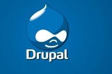 Помогу с Drupal. Создам представление Views 12 - kwork.ru