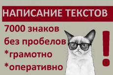 Переведу 1 час любой записи в грамотно оформленный текст 3 - kwork.ru