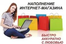 Наполнение контентом 21 - kwork.ru