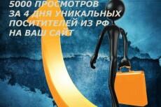 8000 тысяч просмотров для вашего сайта + 2000 тысячи в подарок 16 - kwork.ru