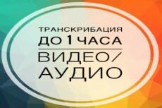 Перевод видео-, аудио- в текст, расшифровка записей в текст 20 - kwork.ru