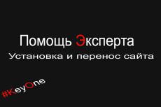 Готовая площадка для сайта (покупка домена+покупка хостинга+установка CMS) 22 - kwork.ru