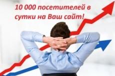 Увеличу количество уникальных посетителей от 50 до 500 в сутки + Бонус 20 - kwork.ru
