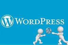Премиум шаблоны wordpress интернет-магазинов 61 - kwork.ru
