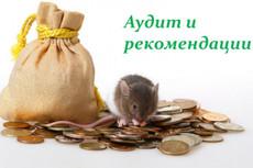 Профессиональная настройка Яндекс. Директ. Поиск, РСЯ 32 - kwork.ru
