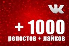 1000 Репостов +1000 Лайков ВКонтакте, комплект 22 - kwork.ru