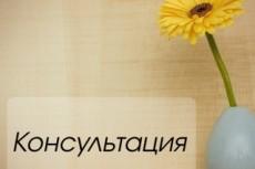 Ведение бухгалтерского учета 33 - kwork.ru
