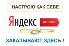 Настрою Я.Директ до 100 ключей на поиске + РСЯ до 30 Вч запросов 23 - kwork.ru