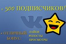 Раскрутка и продвижение групп, пабликов Вконтакте - 10 дней 5 - kwork.ru