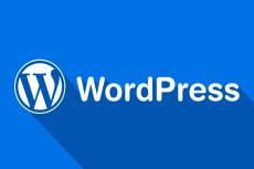 Доработаю ваш сайт на Wordpress 20 - kwork.ru