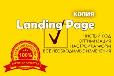 Скопирую любой Landing Page. Полная настройка форм, текстов, фото 9 - kwork.ru