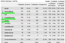 8000 просмотров сайта + 2000 в подарок 8 - kwork.ru