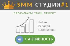 1100 подписчиков в группу ВК, от опытного SMM мастера. Безопасно 4 - kwork.ru