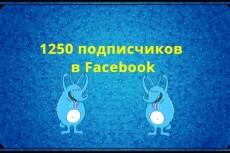 Добавлю 2000 вечных подписчиков на паблик в Facebook 22 - kwork.ru