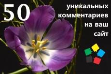 +50 уникальных комментариев на Вашем сайте или блоге 8 - kwork.ru