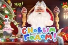 Персональные видеопоздравления с днём рождения от Деда Мороза 5 - kwork.ru