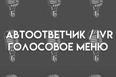Озвучка информационного ролика 9 - kwork.ru