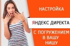 Настрою рекламную кампанию на Яндекс.Директ 13 - kwork.ru