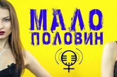 Сделаю субтитры к видео на youtube 12 - kwork.ru