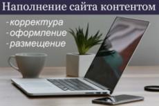 Наполню сайт статьями 12 - kwork.ru