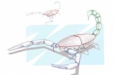 Нарисую 2D рисунок 14 - kwork.ru