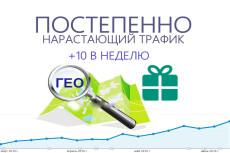 5000 уникальных посетителей с прогулкой по сайту из поисковых систем 6 - kwork.ru