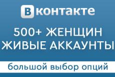 Раскрутка группы Вконтакте - плюс 600 живых подписчиков, продвижение 22 - kwork.ru
