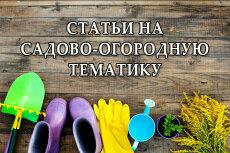 Статьи на компьютерную тематику 3 - kwork.ru