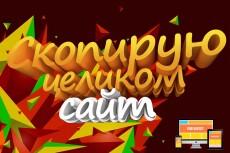 Сайт на WordPress. Качественно и быстро 17 - kwork.ru