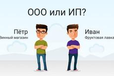 Заполнение заявления для регистрации ИП 17 - kwork.ru