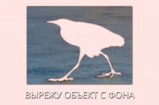 Удалю ненужные объекты с фото 5 - kwork.ru